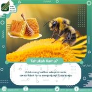 WhatsApp_Image_2020-10-21_at_09_25_03.jpeg